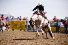PICT -Man on Horse - Adobe Stock - Tyler Olson