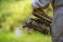 Most important equipment for beginner beekeepers