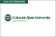 PROMO - 330 x 220 CSU Extension