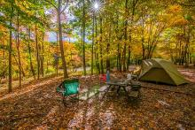 PROMO Outdoors - Camping Tent Trees Forest Recreation - iStock - Matthew H Irvin
