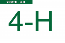 Youth - 4-H