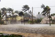 Different Ways to Help People Affected by Hurricane Season