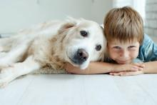Ways To Add Years To Your Dog's Life