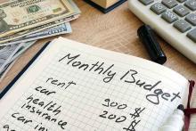 PROMO Finance - Personal Budget Ledger Calculator Money - iStock - designer491