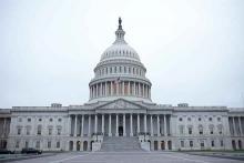 PROMO Government - Capitol Washington DC United States - iStock - Luka Banda