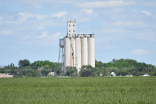 PROMO 660 x 440 Agriculture - Wheat Green Elevator Eads Kiowa County - Chris Sorensen